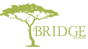 The Bridge of Hope Africa video