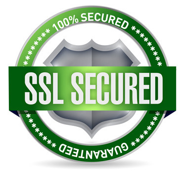 ssl secured donation